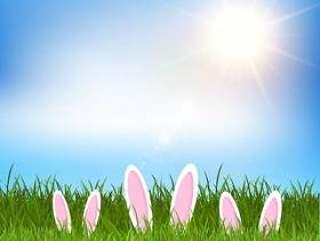 复活节兔子耳朵隐藏在草地上