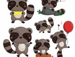 可爱的浣熊集