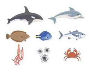 平坦的海洋动物载体