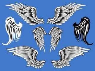 抽象矢量插图翅膀集
