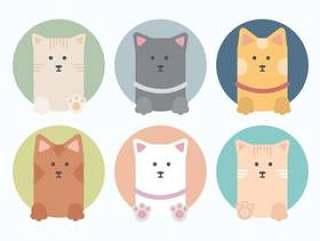 矢量集合的可爱的猫咪