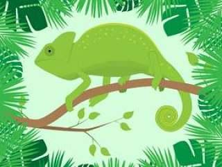 在热带叶子框架分支的变色蜥蜴