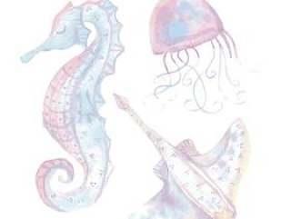 浪漫的海洋动物