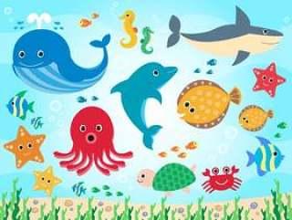 53.海洋生物设置