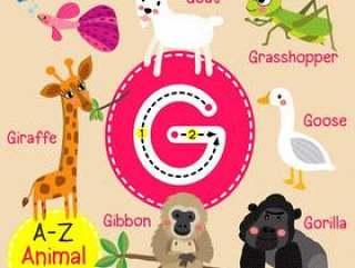 字母G动物园字母表