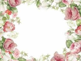 温柔的颜色玫瑰花框架 - 框架
