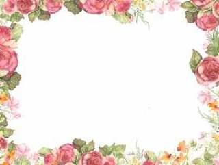 美丽的颜色玫瑰花框架,框架