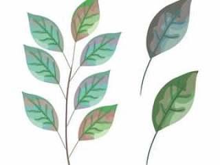 设置叶子植物图标