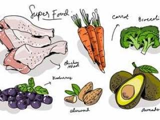 超级食物手绘矢量图