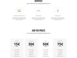 经典国外简洁电子商务网站PSD