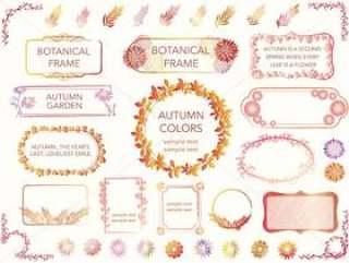 一套花和植物在秋天的颜色分类框架。