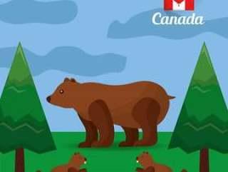 加拿大熊海狸在森林里自然