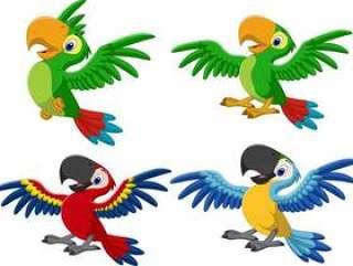 卡通金刚鹦鹉收藏集
