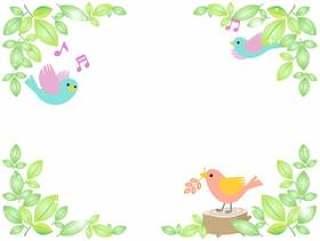 新鲜的绿色和小鸟2