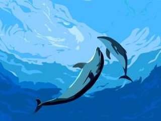 海豚在切海里玩
