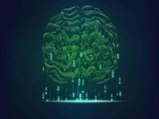 二进制大脑