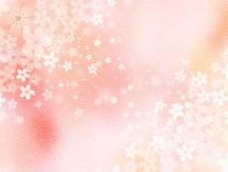 樱桃树_日本模式_淡粉色背景1631