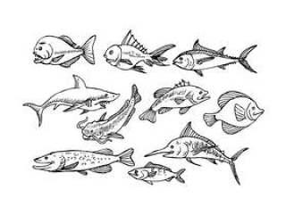 鱼素描图标矢量