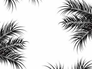 热带设计与黑色的棕榈叶和植物在白色背景上