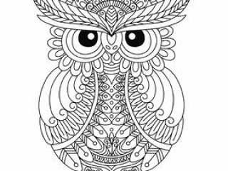 猫头鹰着色书成人的
