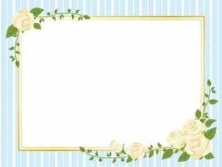 白玫瑰框架框架样式框架装饰框架01