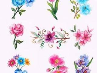 水彩花卉集合