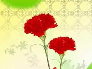 鲜花背景PSD分层素材-6