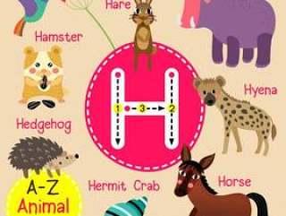 字母H动物园字母表