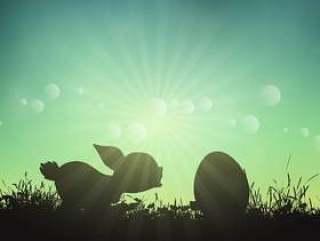 复活节兔子和鸡蛋
