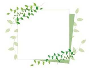 新鲜的绿色留言卡