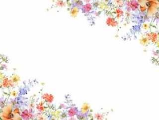 花框架 - jinias和飞燕草的装饰框架