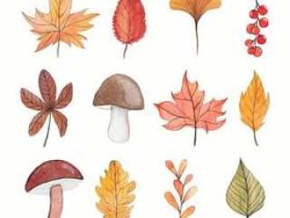 秋天水彩元素集合