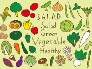 手写的手绘蔬菜酿五颜六色
