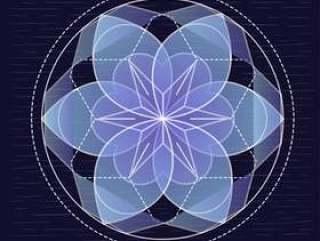 矢量手绘透明花卉图