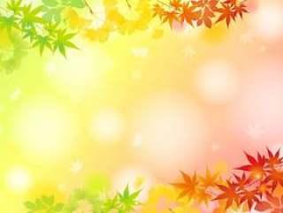 季节性放松的秋叶帧1
