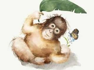 小黑猩猩的例证