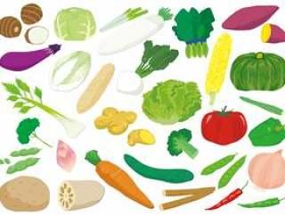 各种各样的蔬菜