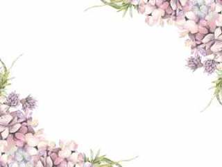 花框架143 - 绣球花和香葱花框架