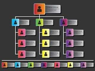 组织图表信息图表