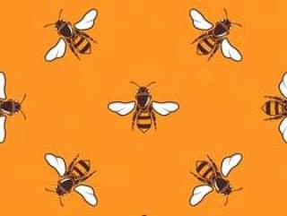 飞行的蜜蜂矢量无缝模式