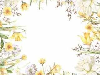 早春的花园水仙花花架