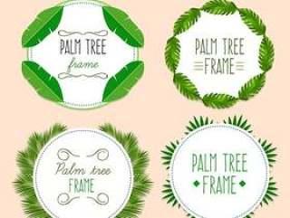 棕榈树叶框架