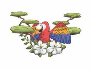 水彩金刚鹦鹉字符矢量