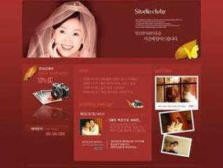 婚纱摄影网站模板(06)