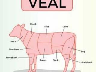 小牛肉矢量