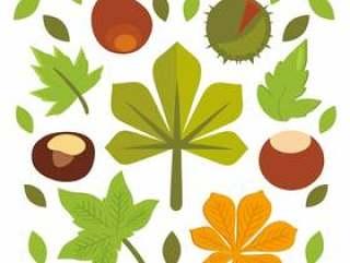 七叶树绿色树叶矢量