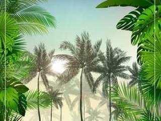 与棕榈树和叶子的热带早晨风景