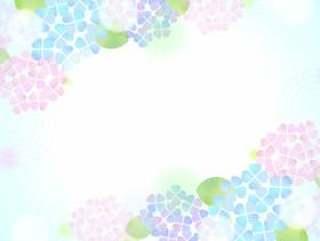柔和的颜色绣球花背景4