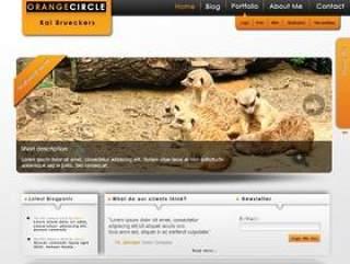 国外漂亮的界面psd网页模板