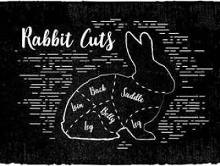 的兔子削减矢量背景